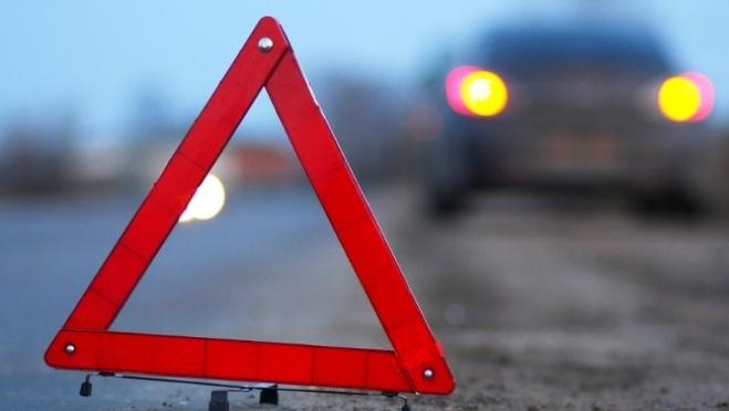 В Медведевском районе в ДТП погибли два пешехода (18+)