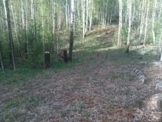 В лесах Марий Эл зафиксировано два лесных пожара