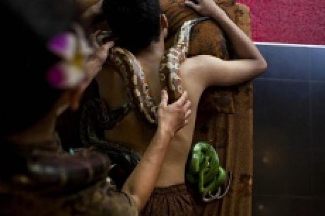 Теперь и в нашем салоне уникальный массаж со змеями!