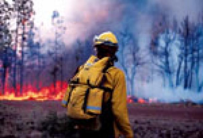 Заметное похолодание отсрочило закрытие лесов Марий Эл