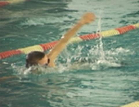 В школах столицы Марий Эл отменяются уроки плавания