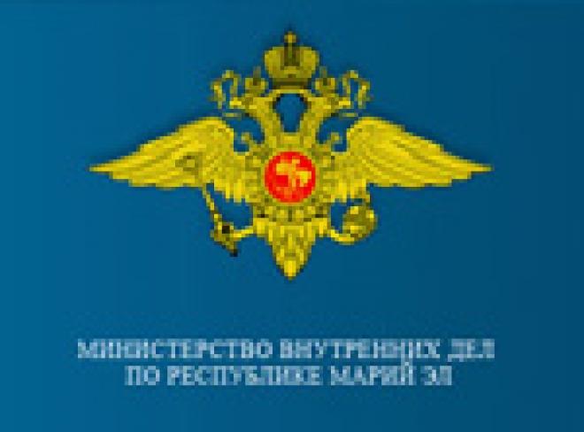 В арсенале сотрудников МВД Марий Эл появилось именное холодное оружие