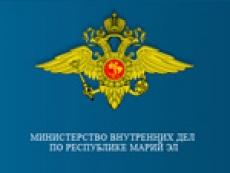 Татарские силовики комментируют криминальную обстановку в Марий Эл