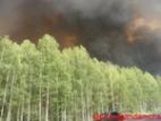 В Марий Эл пожар поглощает новые гектары леса