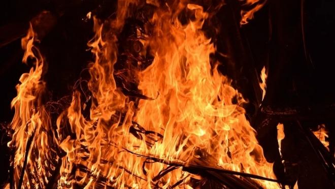 В Марий Эл почти в два раза сократилось количество пожаров