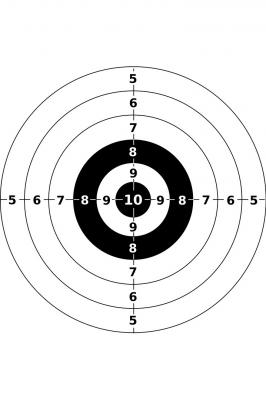 Первенство Республики Марий Эл по стрельбе