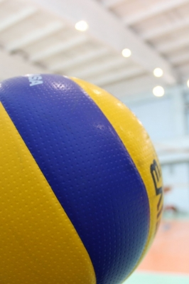 Чемпионат и Первенство Республики Марий Эл по волейболу