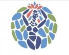 Минеральная природная питьевая столовая вода «Вуд Ава»