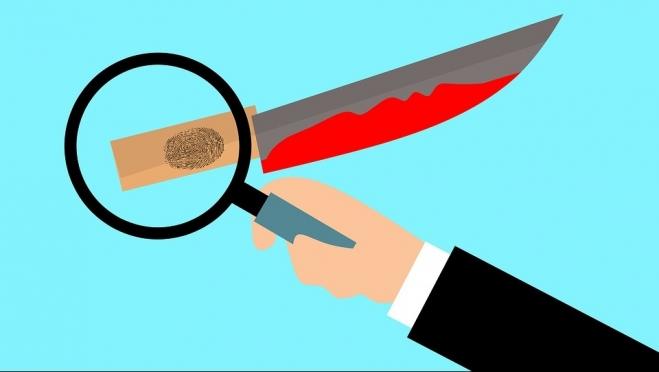 Полиция Волжска ищет убийц молодой женщины и детей 18+
