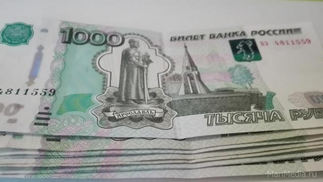 Полицейские Йошкар-Олы и Воронежа задержали мошенника из Санкт-Петербурга