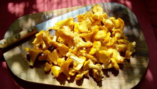 Почему детям до 14 лет не рекомендуется есть грибы