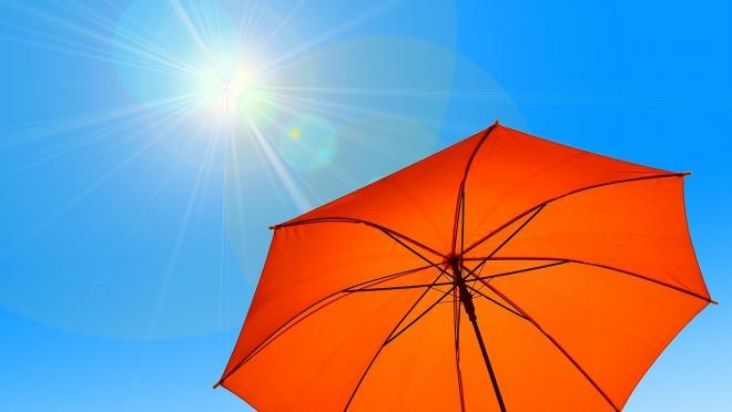 В Марий Эл на следующей неделе ожидается до +31ºС