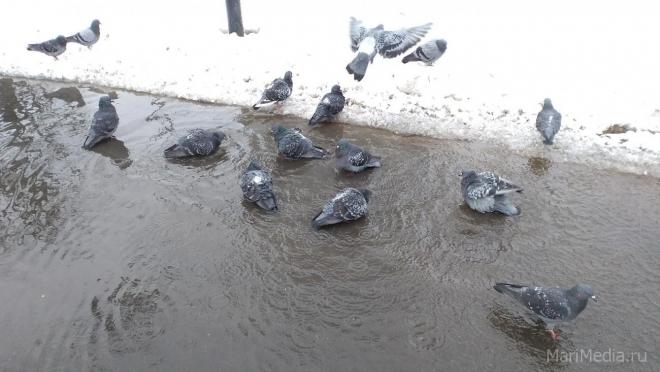 В Поволжье ожидается аномальная погода в марте