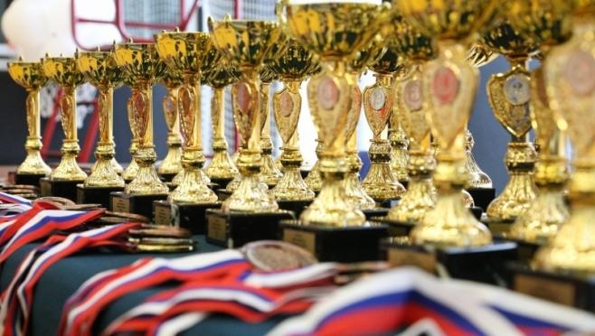 Глава Марий Эл объявил благодарность спортивным тренерам республики