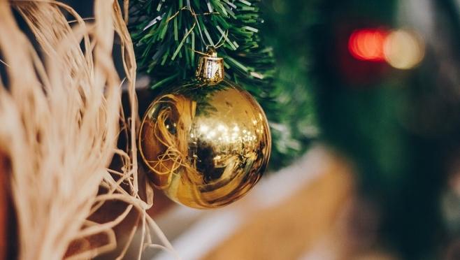 Новогодняя ёлка: живая или искусственная