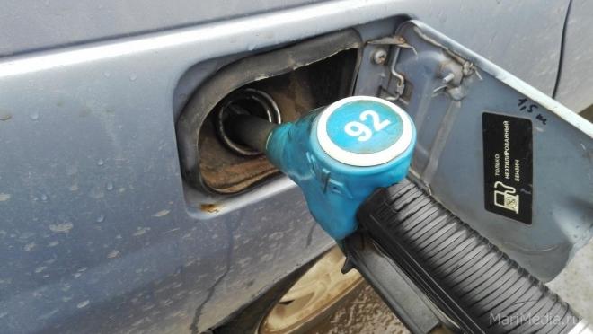 Марий Эл по доступности бензина для населения оказалась на 65 месте