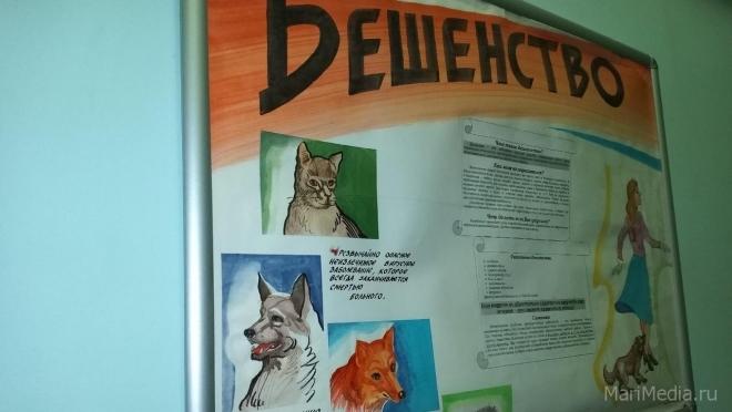 В Марий Эл зарегистрировано 8 случаев бешенства среди животных