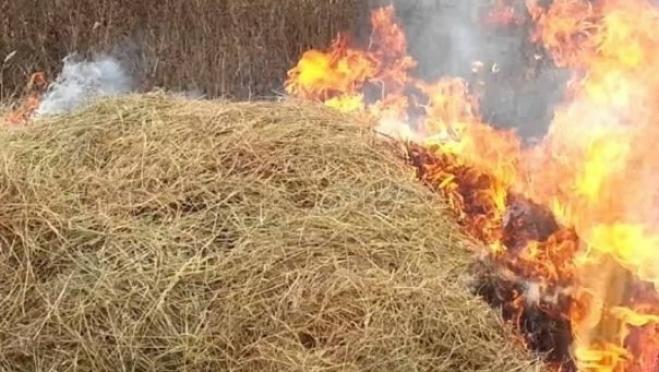 В августе в Марий Эл более 20 раз горела сухая трава