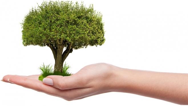 В Марий Эл может появиться ЕГЭ по экологии