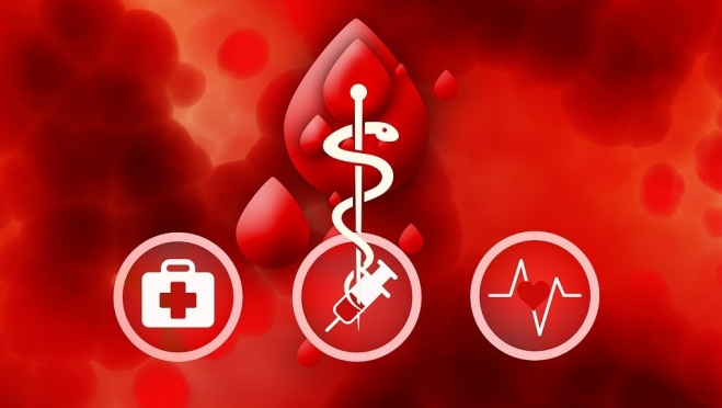 В Йошкар-Оле проходит акция «Спаси жизнь – стань донором костного мозга»