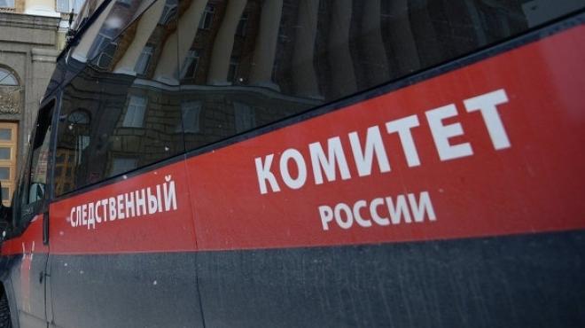 В Йошкар-Оле возбуждено уголовное дело по факту схода с крыши снега на женщину