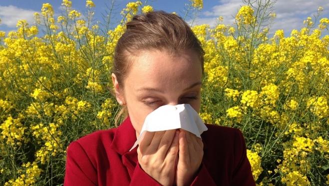 Четверть россиян страдают аллергией на лекарства и растения