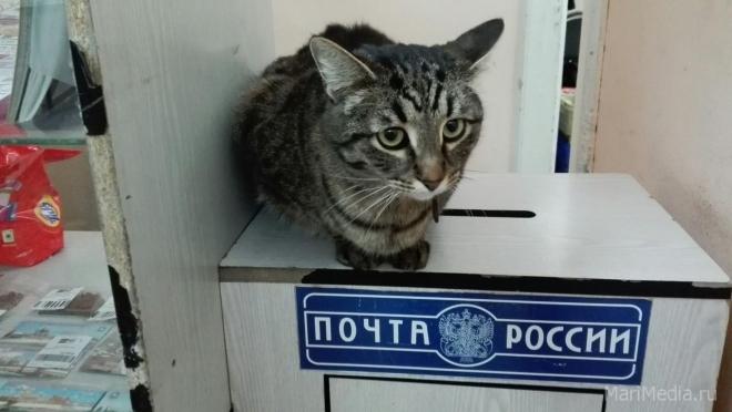 В сентябре жители ул. Большое Чигашево останутся без почты