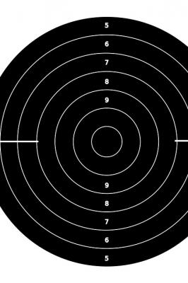 Чемпионат Республики Марий Эл по стрельбе из лука