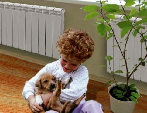 Комфортный микроклимат: увлажняем воздух в помещении