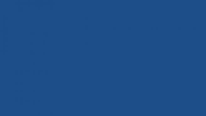 Институт цвета назвал цветом 2020 года классический синий