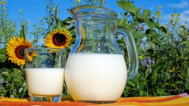 Молочная продукция – вся информация о составе на этикетке