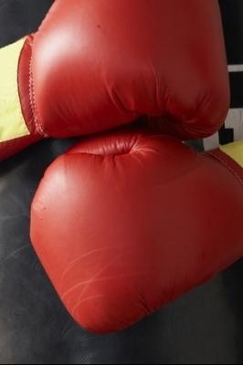 XVIII Межрегиональный турнир по боксу класса «Б»