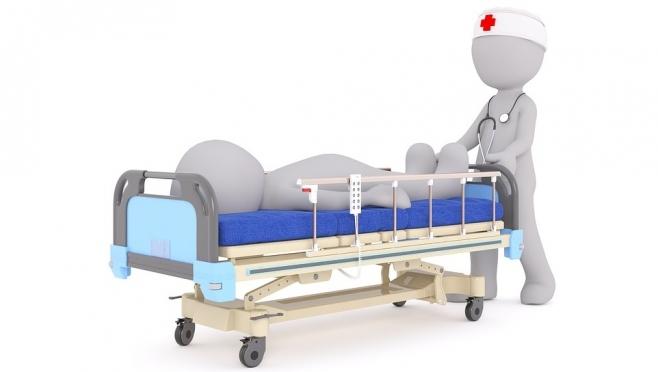 В Марий Эл зарегистрирован первый случай клещевого вирусного энцефалита