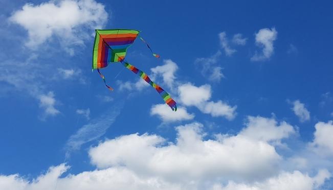 В Йошкар-Оле запустят цифровых воздушных змеев