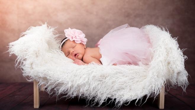 Свежий ГОСТ на фотосессии новорождённых отправлен на доработку