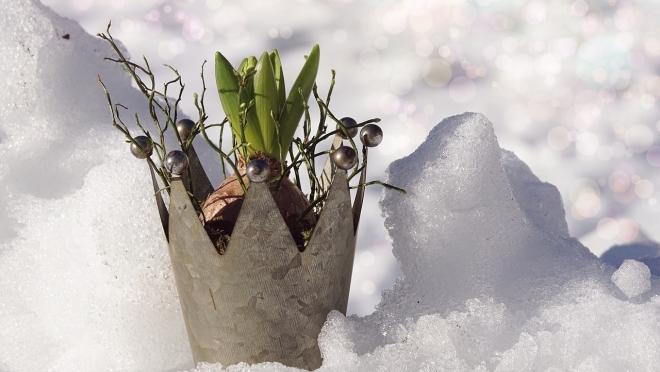 Зима обещает удивить жителей Марий Эл аномальными показателями