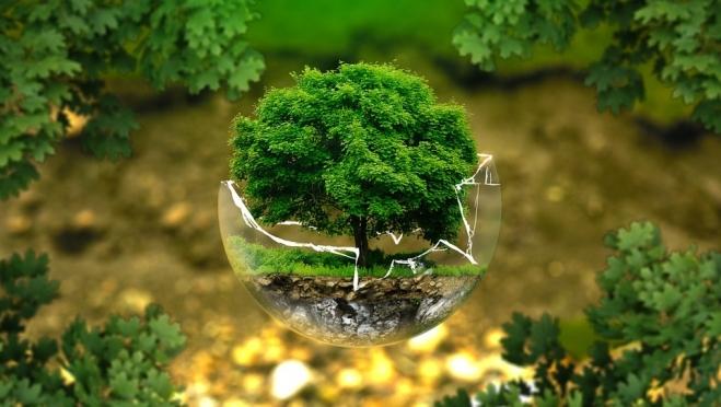 В Йошкар-Оле начинаются Дни защиты от экологической опасности