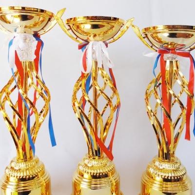 Кубок Республики Марий Эл по смешанному боевому единоборству ММА