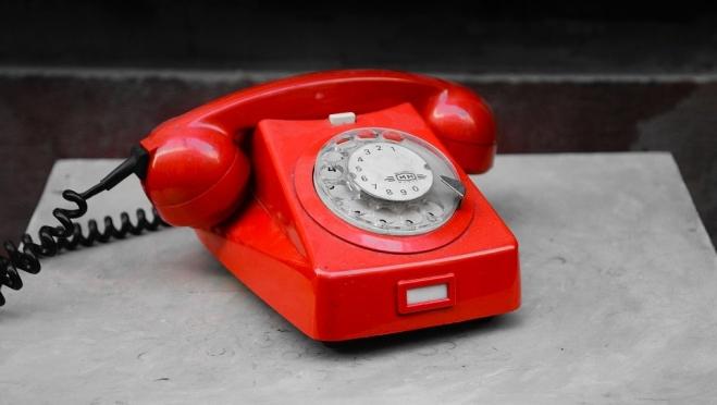 Росреестр по Марий Эл проведёт «Единый день консультаций по телефону»
