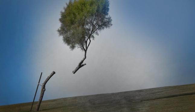 Завтра в Марий Эл ожидается гроза и сильный ветер