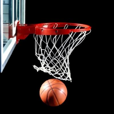 Чемпионат Республики Марий Эл по баскетболу