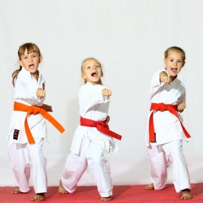 Чемпионат Республики Марий Эл по айкидо кихон