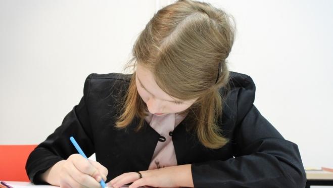 Выпускники Марий Эл до 1 февраля должны успеть подать заявление на участие в ЕГЭ