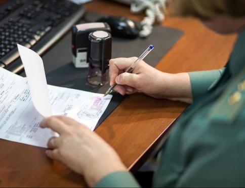 Какие услуги может предложить представитель в таможенной сфере?