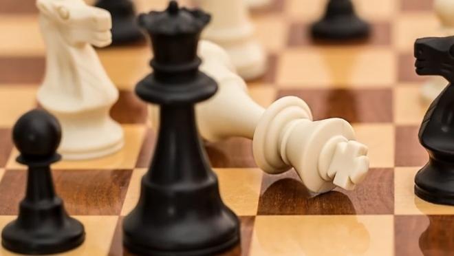 Юный шахматист из Марий Эл завоевал II место в онлайн турнире «Первенство республики Крым»