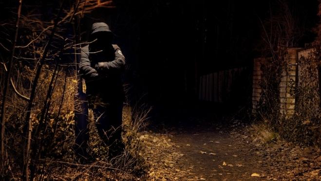 Жители Сернурского района, оставшись без работы, пошли на преступление