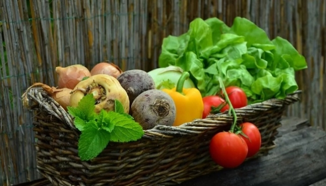 Овощи, выращенные в Марий Эл, ждут в Хабаровском крае