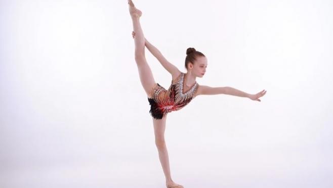 Федерация эстетической гимнастики Марий Эл – победитель грантового направления