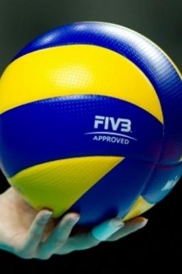 V традиционный межрегиональный турнир по волейболу