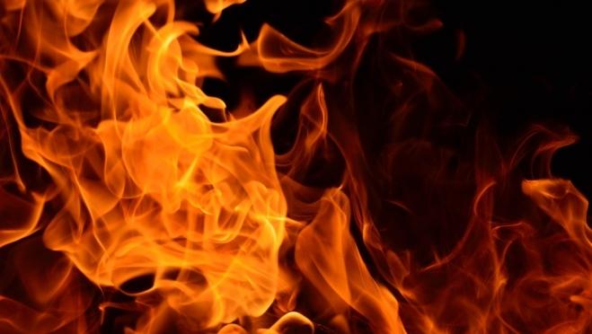 За неделю в Марий Эл от огня погибли люди и птицы